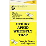 Yellow Sticky Aphid Whitefly Trap Pack of 15 ~ Seabright
