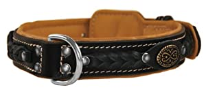 Dean & Tyler Dean's Legend Dog Collar with Brown Padding and Chrome Plated Steel Hardware, 28 by 1-1/2-Inch, Black