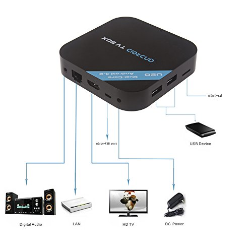 Neewer® Dual Core Android 4.2 Smart TV Box XBMC Streaming Media Player 1080P WIFI HDM XBMC Netflix YOUTUBE Skype QQ, Supports 3G Dongle U-Disk