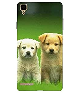 Snazzy Dog Printed Multicolor Hard Back Cover For Oppo F1 Selfie