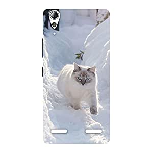 Snow Cat Back Case Cover for Lenovo A6000 Plus