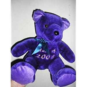 Purple Teddy Bear on Purple Teddy Bear Plush Toy Stuffed Animal   Class Of 2003