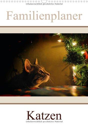 Katzen - Familienplaner (Wandkalender 2013 DIN A3 hoch): Auf Samtpfoten durch die Jahreszeiten ... (Monatskalender, 14 Seiten), Buch