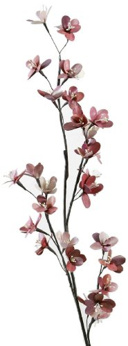 Vance Kitira Palm Leaf Flowers, Sakura, 48-Inch, 24/Stem, Rust 1-Branch