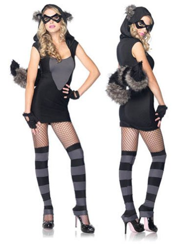 Risky Raccoon Sm Md Adult Womens Costume