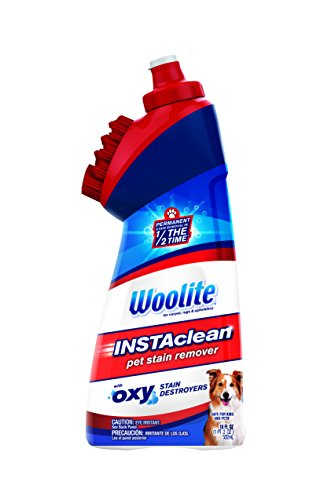 bissell-1740-woolite-instaclean-pet-with-brush-head-cleaner