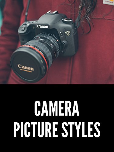 What is a Picture Style? How to Choose the Right One