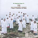 The Beginning Stages Of ... The Polyphonic Spree