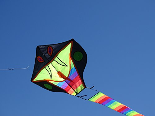 Kites for Kids - The King Cobra Kite from The Kite Outlet for Kids 3+ Years and Older ...