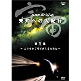 NHKスペシャル 宇宙 未知への大紀行 第1集 ふりそそぐ彗星が生命を育む [DVD]