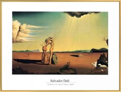 Salvador Dali Poster Kunstdruck
