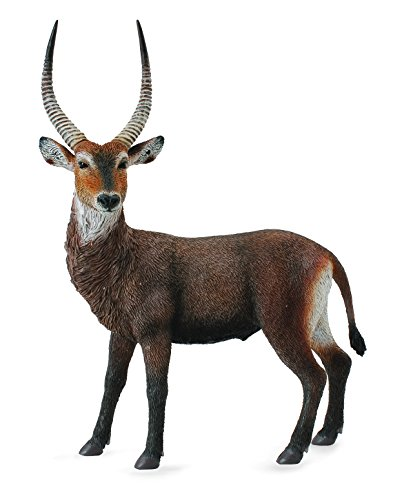 CollectA Waterbuck Figure