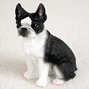 Boston terrier mini
