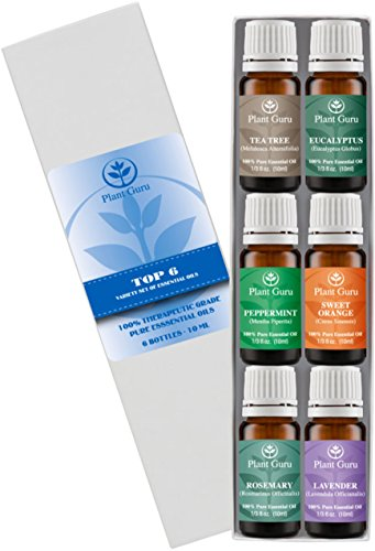 Essential Oil Variety Set - 6 Pack - 100% Pure Therapeutic Grade 10ml. Set includes- (Peppermint, Lavender, Sweet Orange, Rosemary, Eucalyptus & Tea Tree)