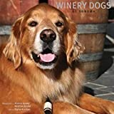 Search : Winery Dogs of Sonoma