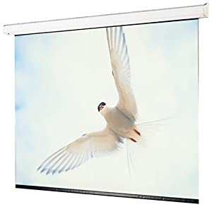Draper 116022 133-Inch Targa HDTV Motorized Screen (Matte White) (Discontinued by Manufacturer)