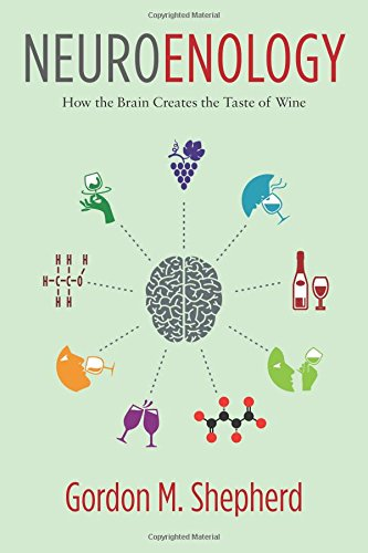 Neuroenology: How the Brain Creates the Taste of Wine by Gordon M. Shepherd
