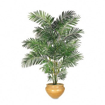 Nu-Dell Artificial Trees PLANT,ARECA PALM, 6FT. (Pack of 2)
