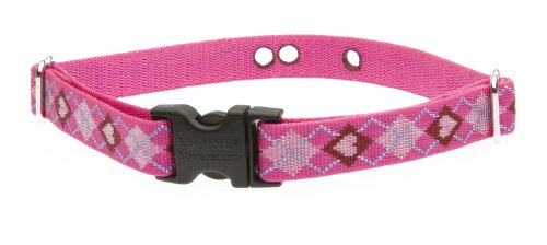 Lupine 3/4-Inch Puppy Love 12-17-Inch Containment Collar Strap For Small To Medium Dogs