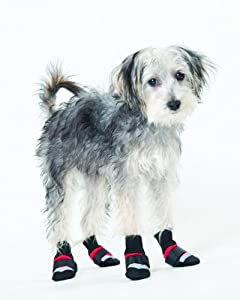 Fashion Pet Lookin Good Extreme All Weather Boots for Dogs, Small, Red