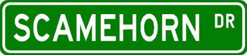 SCAMEHORN Street Sign ~ Personalized Family Lastname Sign ~ Gameroom, Basement, Garage Sign Novelty** ALUMINUM METAL - Buy SCAMEHORN Street Sign ~ Personalized Family Lastname Sign ~ Gameroom, Basement, Garage Sign Novelty** ALUMINUM METAL - Purchase SCAMEHORN Street Sign ~ Personalized Family Lastname Sign ~ Gameroom, Basement, Garage Sign Novelty** ALUMINUM METAL (The Lizton Sign Shop, Home & Garden,Categories,Patio Lawn & Garden,Outdoor Decor)
