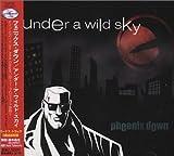 Under a Wild Sky by Phoenix Down (2000-02-23)