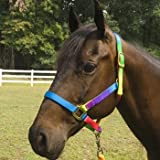 Rainbow 3-Ply Nylon Halter Large