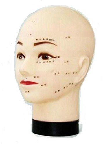 マネキン ヘッド マッサージ 練習用 ツボ 指圧 整体 鍼灸 美容 トレーニング