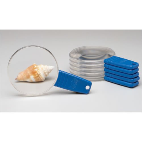 Clear Magnifiers (Set of 6)