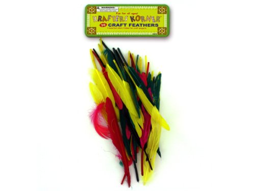 Craft feathers - Pack of 36