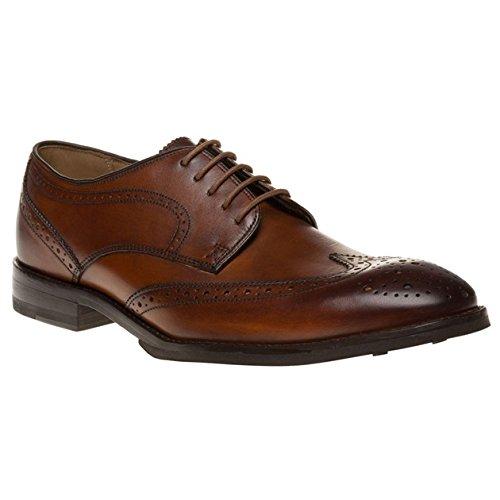 aquascutum-brogue-uomo-scarpe-marrone