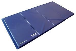 """4'x8'x2"""" Gymnastics Tumbling Martial Arts V4 Folding Mat"""