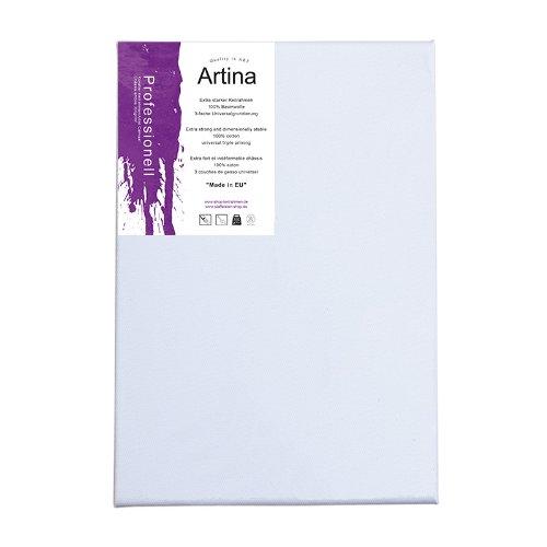 artina-chassis-entoile-toile-a-peindre-professionel-qualite-fine-appretee-3-fois-350g-m-80x120cm
