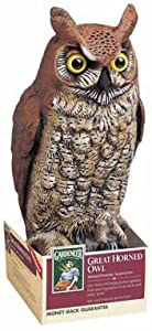 Dalen OW6 Gardeneer 16-Inch Molded Owl, 2-PACK by Dalen