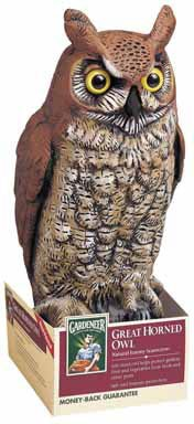 Dalen OW6 Gardeneer 16-Inch Molded Owl, 2-PACK