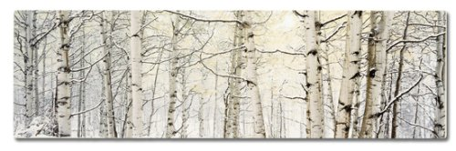 Accents de Ville Birches Canvas, 10 X 32″