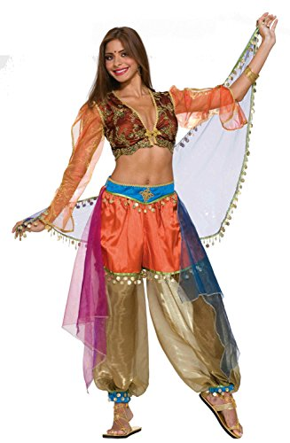 Forum Novelties Women's Designer Collection Deluxe Flirty Harem Dancer Costume, Multi, Small image