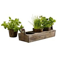 Wooden Garden Plant Tray - Three-sectioned Tray for Herbs And Flowers Product SKU: PL221917