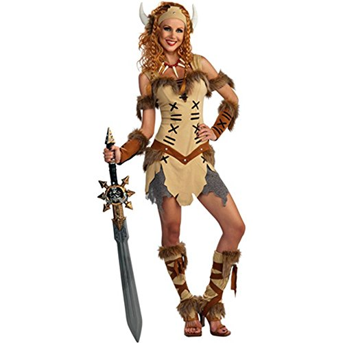 Viking Princess Adult Costume - Standard