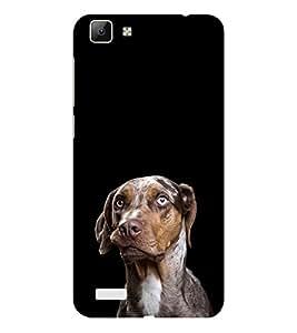 ifasho black Dog Back Case Cover for VIVO Y53