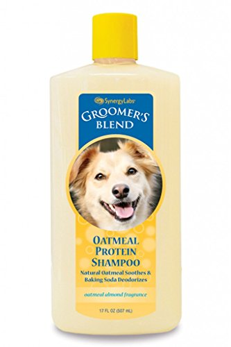 SynergyLabs Groomer?s Blend Oatmeal Protein Shampoo; 17 fl. oz.