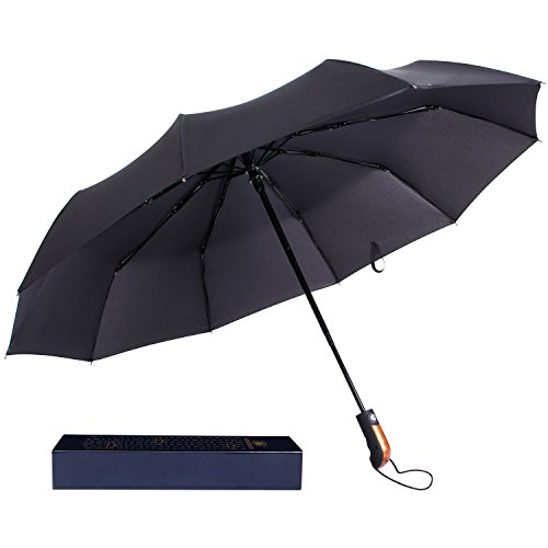 langforth-travel-umbrella-10-rid-tested-55mph-wind-resistant-compact-auto-open-close
