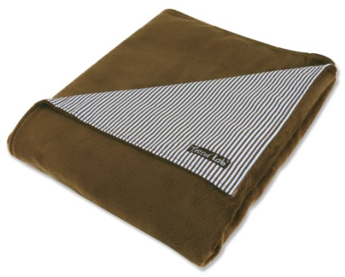 Trend Lab Receiving Blanket in Yacht Club Stripe Front/Brown Velour Back - 1