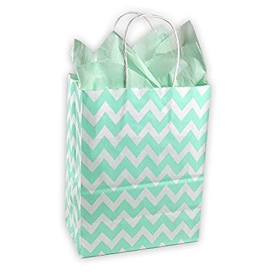 Easter Mint Green and White Chevron Pattern Kraft Gift Bag (Set of 8)
