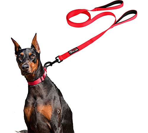 buy Dog Leash 2 Handles - RED - Extra Long 8ft Lead - Heavy Duty - Double Handle for Greater Control Safety Training - Perfect for Large Dog or Medium Dog - Dual Padded Handles - Protect Dog in Traffic for sale