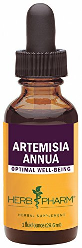 Herb Pharm Certified Organic Artemisia Annua (Sweet Annie) Extract - 1 Ounce