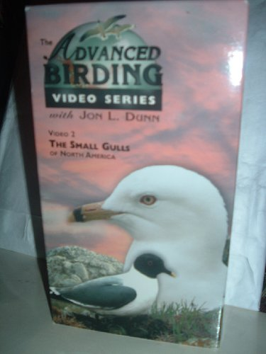 The Advanced Birding Video Series With Jon L. Dunn, Video 2: The Small Gulls Of North America