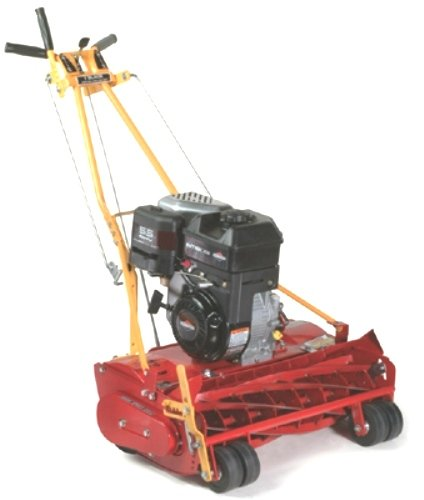 McLane 25-8.00GT-7 25-Inch 8.00 Gross Torque Briggs & Stratton Gas-Powered Self-Propelled 7-Blade Front-Throw Reel Mower with Grass Catcher picture