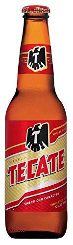 メキシコ産 TECATE(テカテ) ビール 355ml瓶×6本セット