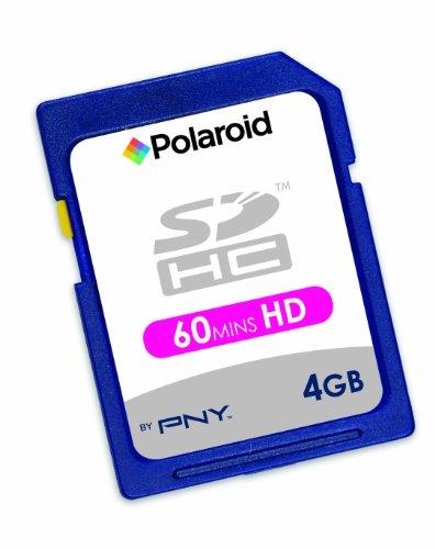 Polaroid SDHC 4 GB Flash Memory Card P-SDHC4G4-10PK/POL (Pack of 10, Black)